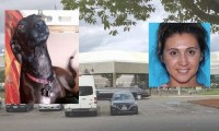 Landlord Steals Dog, Named Isis, Takes A Limo To Jail ...