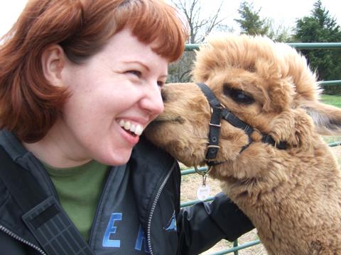 alpaca-and-ana