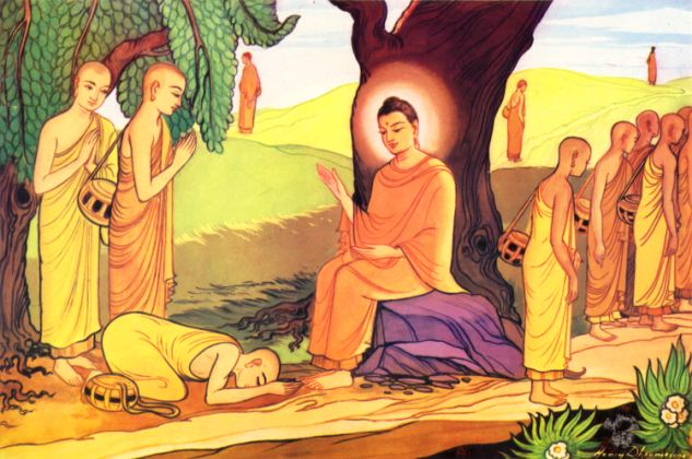 Seeing through the eyes of the dhamma