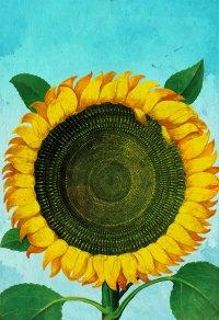 Sunflower Print Sunflowers art botanical print flower ...