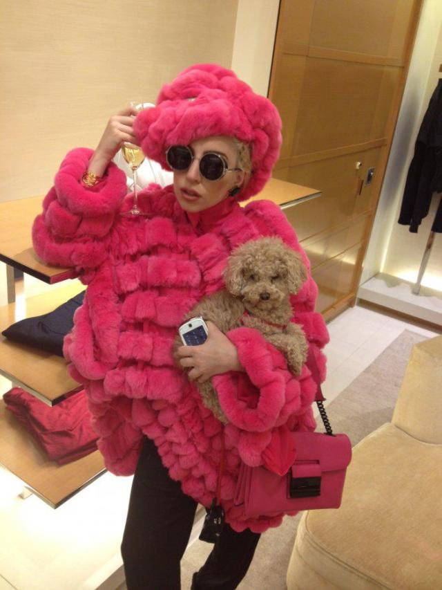 lady_gaga_with_small_dog_fur_coat