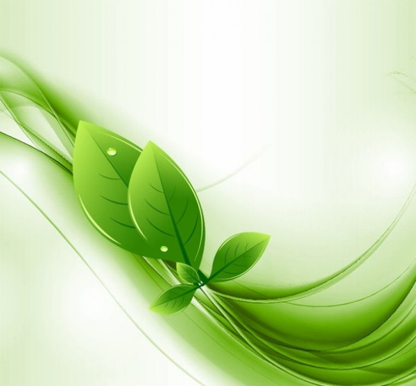 Eco Leaves  Green Waves Abstract Background - WeLoveSoLo