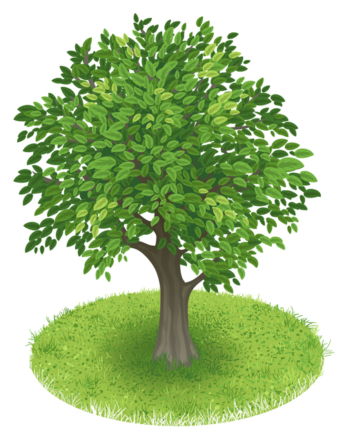 Creative green tree design vector graphics 01 - WeLoveSoLo