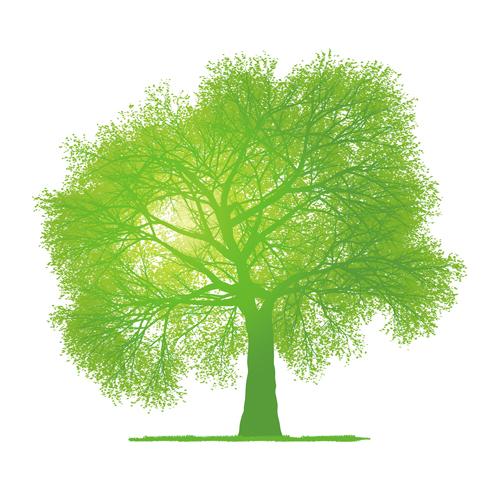 Creative green tree design vector graphics 02 - WeLoveSoLo
