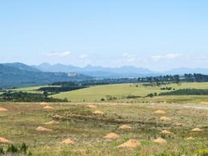 Gardenroute Südafrika