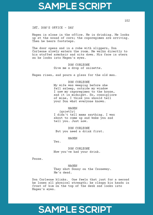 Script Writing for Video - Hire a writer or do it yourself?