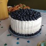 Sour Cream Blueberry Cake