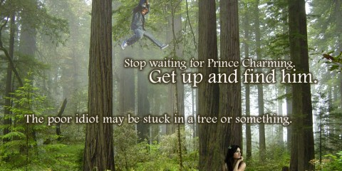 Stop waiting for Prince Charming, Get up and fine him, the poor idiot may be stuck in a tree