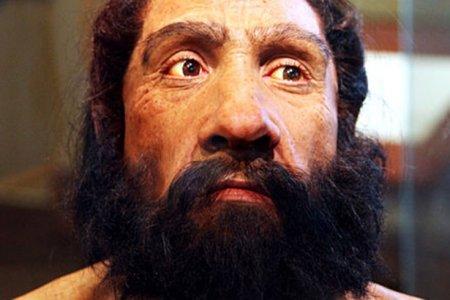 neanderthals-face