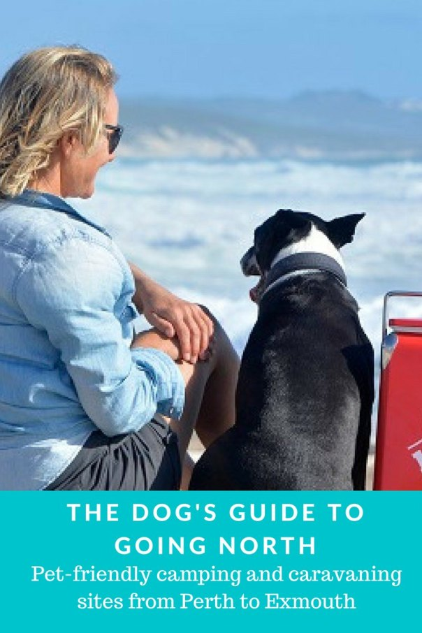 The Dogs Guide to going North