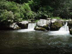 Hazel Creek 2