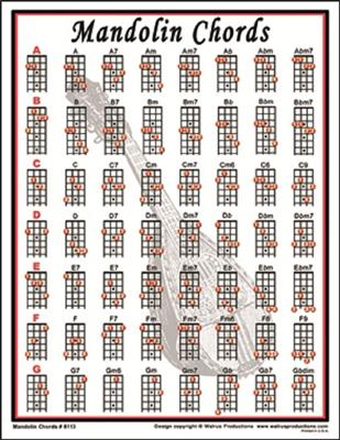 Mandolin Chords Mini Chart West Music
