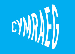 Over £220,000 to extend Welsh Language Charter across North Wales
