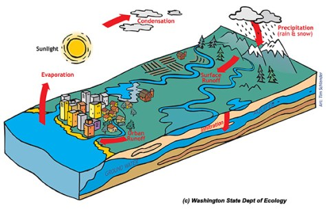 A watershed is generally defined as the area from the top of a hill or mountain to where the water flows into a stream or sea.