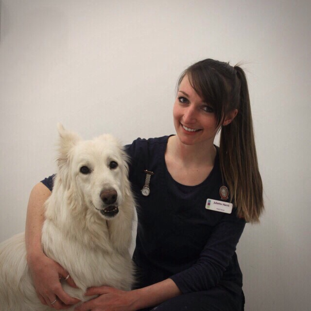 Parkhill Vets In Wetherby
