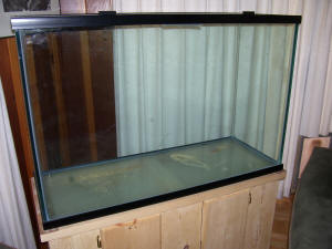FAQs on Glass Aquarium Repair, Silicone/Silastic  100% ONLY, Epoxies