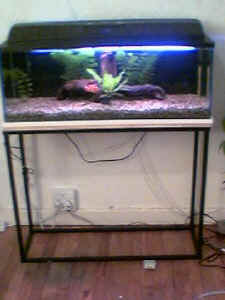 FAQs about Stands, Supports for Aquariums: Leveling 1