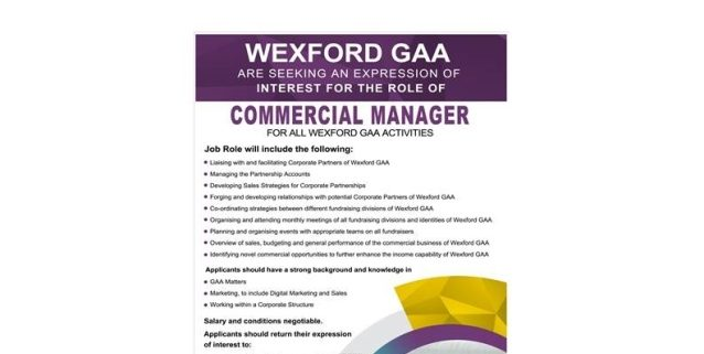 Exciting job opportunity with Wexford GAA, new post as Commercial
