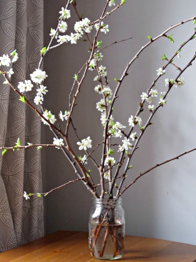 Forced plum blossoms and collection of spring crafts and books for kids