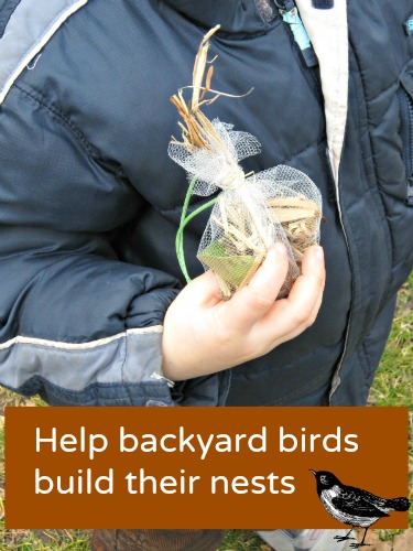 Make a DIY bird nesting ball