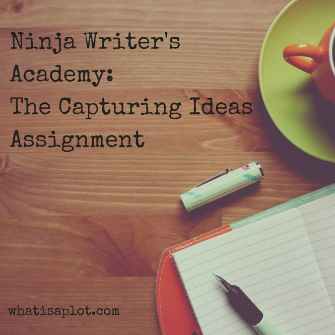 Ninja Writer's Academy-The Capturing Ideas Assignment