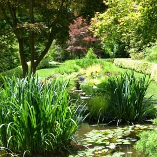 Whats Ur Home Story: Ladew Gardens, Japanese garden