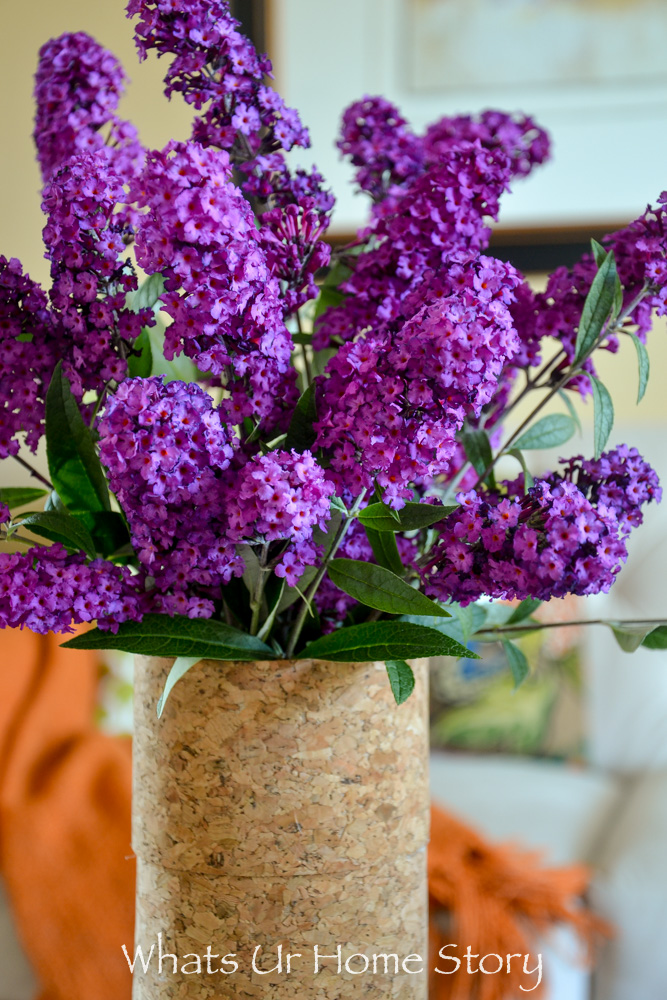 Upcycle an old pasta jar into a cork vase