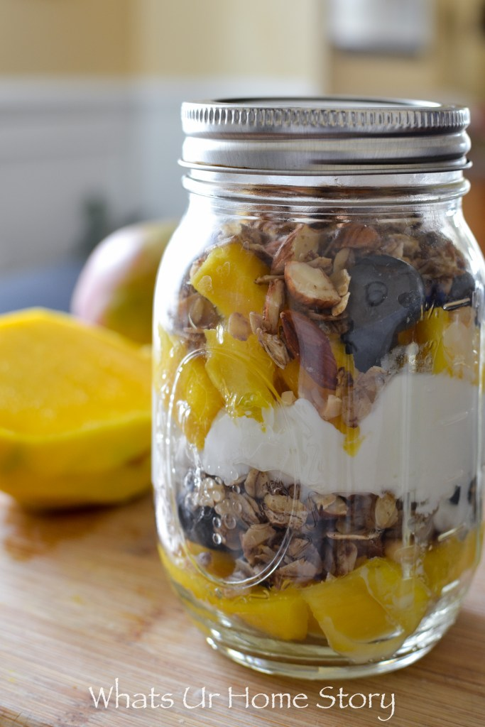 Blueberry Mango Yogurt Parfait