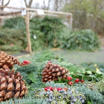 pine cones and greens