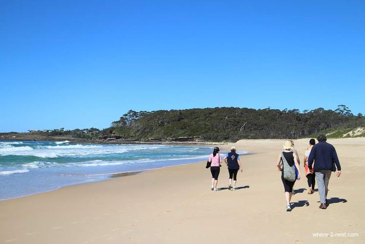 3951-Walking-along-the-beach-with-indigenous-guide-Noel-Butler-DPI-3951