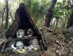 Skulls-at-Skull-Island-Munda-diving-Solomon-Islands-DPI-3879