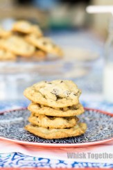 Chocolate Chip Oatmeal Cookies-1757 on Whisk Together