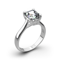 Royal Crown Solitaire Engagement Ring for Princess Cut ...