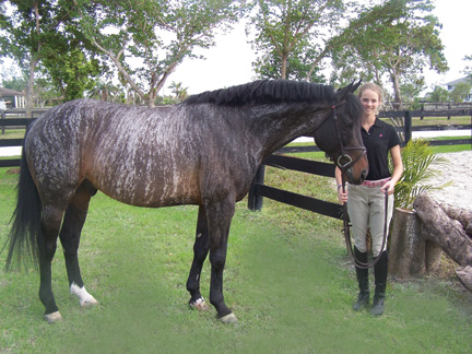 Dark Blue Smokey Quote Wallpaper Got My Brindle Colt Today Pics And A Page 5
