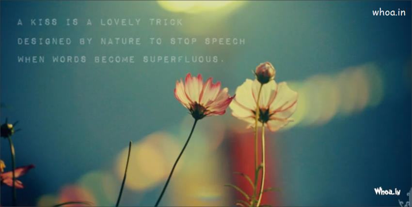 Cute Girly Wallpapers For Laptop Love Kiss Quote Hd Wallpaper For Desktop Free Download