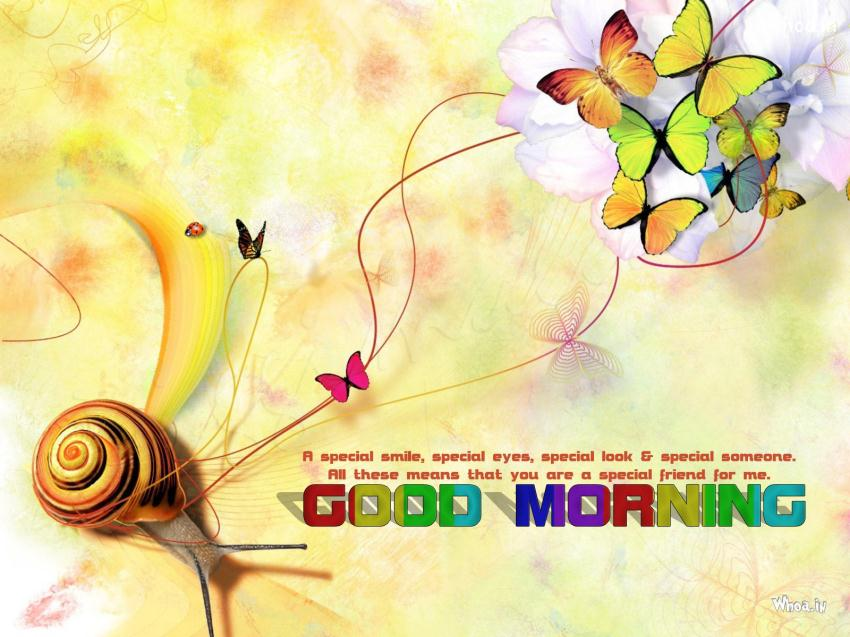 Never Lose Hope Quotes Wallpaper Colorful Good Morning Quotes With Colorful Butterfly