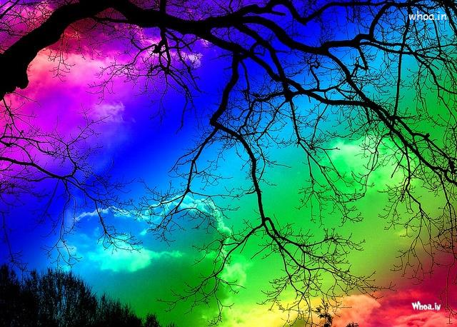 Cute Romantic Love Quotes Wallpaper Colorful Rainbows In Full Sky
