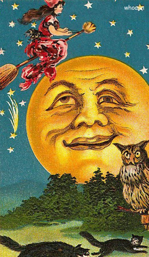 Cute Owl Cartoon Wallpaper Halloween Cartoon Sun Paintings