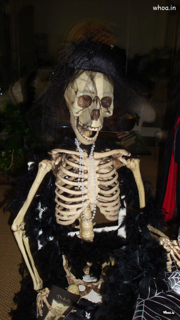 Hanuman Wallpaper Hd 3d Halloween Sitting Skeleton