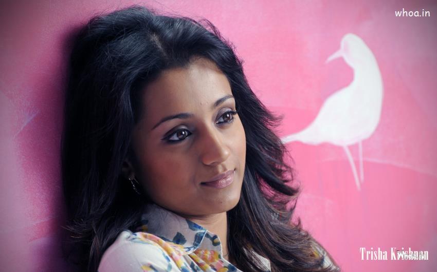 Hanuman Wallpaper Hd 3d Trisha Krishnan Without Makeup Wallpaper