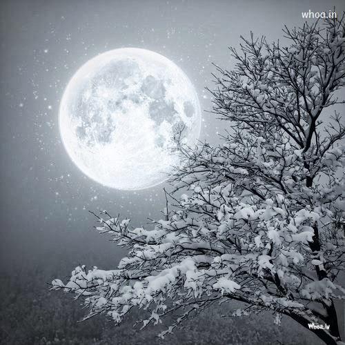 Snow Falling At Night Wallpaper Snow Fall Night Moon Wallpaper