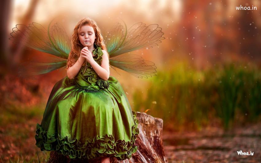 Cute Animated Dolls Wallpapers Cute Girl Faries In Green Dress Hd Wallpaper