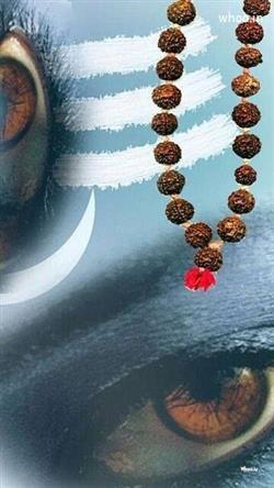 Shiv Ji 3d Wallpaper Lord Shiva Hd Wallpaper Free Download 7