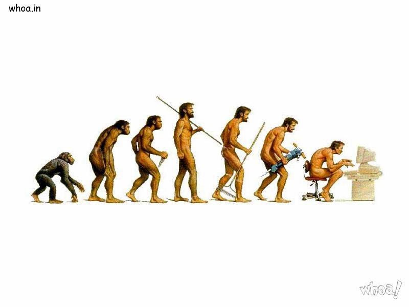 Parineeti Chopra Wallpaper 3d Evolution Of Humans Body And Mind