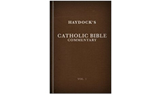 haydockbible