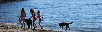 girls-dogs-at-san-juan-islands-beach