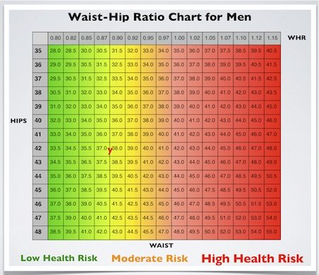 Waist hip ratio Simple measurements Valuable health info