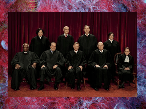 Supreme Court, Abortion, Precedent, Roe v. Wade, Doe v. Bolton, Viability