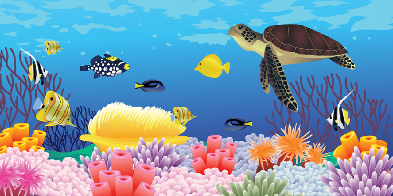 Jungle Animal Wallpaper Pro Art Under The Sea
