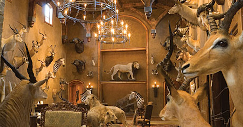 These 11 trophy rooms will blow your mind pics wide